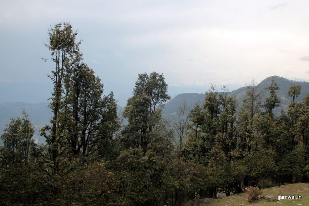 Near Chopata