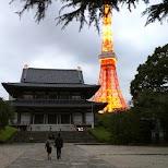 Tokyo Tower & Zoiji temple in Tokyo, Tokyo, Japan