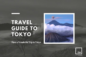Travel Guide to Tokyo