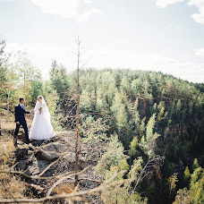 Wedding photographer Oleksandr Shvab (Olexader). Photo of 19.12.2017