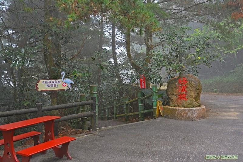 鳳凰谷鳥園生態園區好漢坡