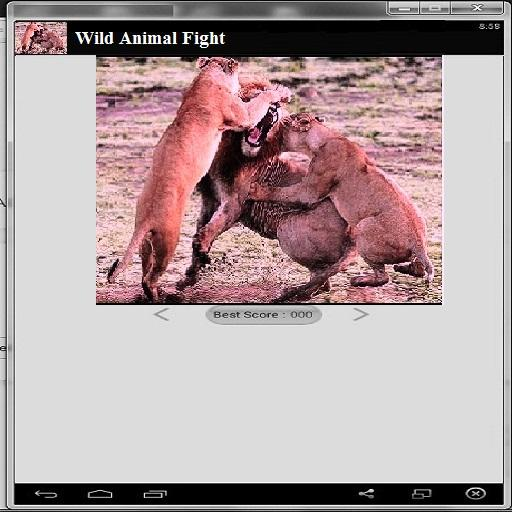 Wild Animal Fight