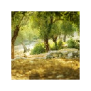 Природа (Sielena theme) - Chrome Web Store