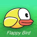 Flappei Bird Game