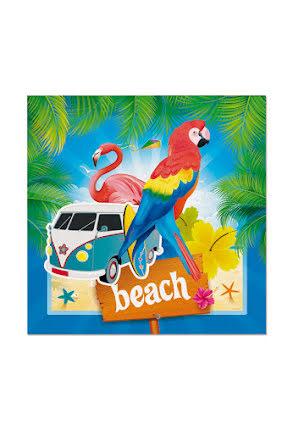 Beach, Servetter