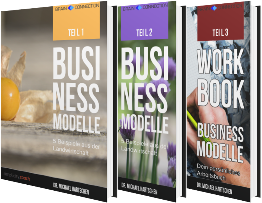 EBook Geschäftsmodelle Innovation Einfachheit Hartschen