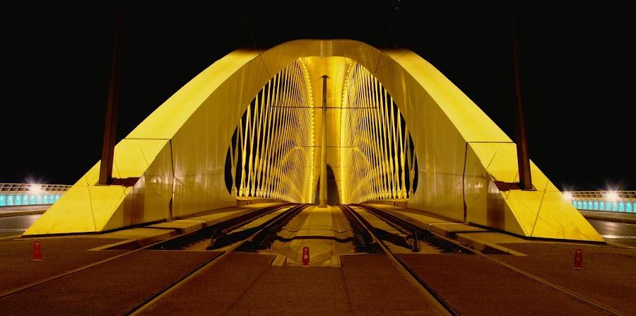 Trojský most by Petr Olša - City,  Street & Park  Night