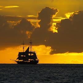 by Peter Kafer - Transportation Boats ( sailboat, seascape, tall ship, sunset, unicorn, pirate ship )