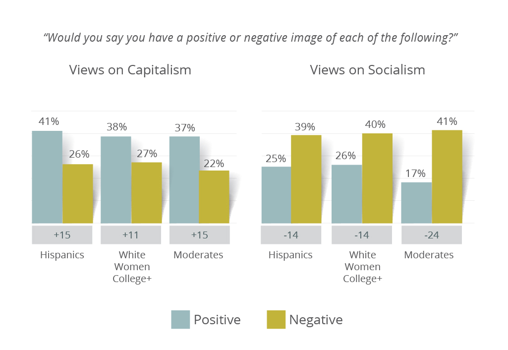 Meeting Street Insights graph on swing voter groups views of capitalism and socialism.