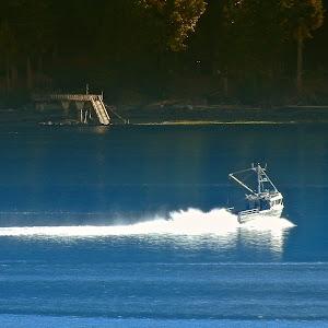 dockboat05.JPG