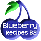 Blueberry Recipes B2