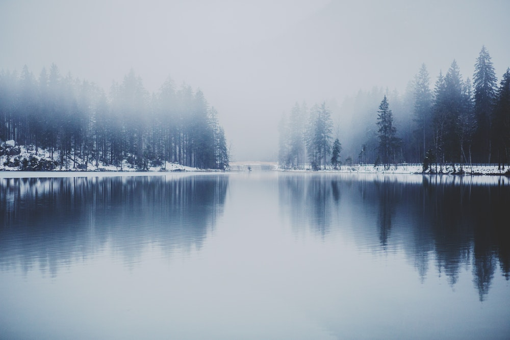 A lake with snowy wooded shores in fog