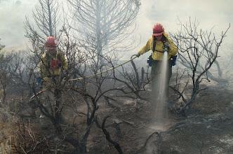 Photo: Mop up; Reynolds Creek Idaho