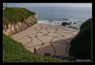 Photo: 'Meanderings II', Santa Cruz, CA