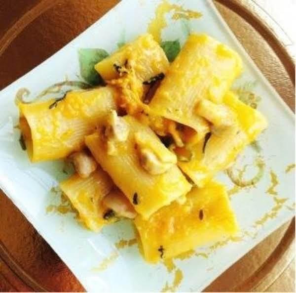 Paccheri Pasta With Roasted Pumpkin