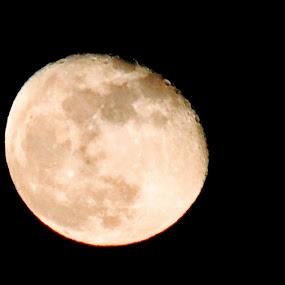 Moon by Poli Paunova - Uncategorized All Uncategorized ( moon,  )