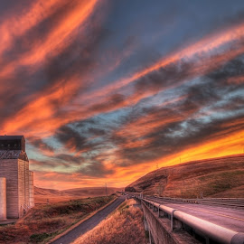 Roadside Silo by Eric Demattos - Buildings & Architecture Other Exteriors ( eric demattos, road, sunset, farm, wheat, grain, silo, travel )