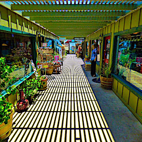 Temecula Tunnel by Brendan Mcmenamy - Novices Only Landscapes ( wine, shady, plants, temecula, downtown )