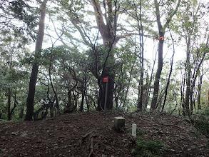 東光寺山(二等三角点)