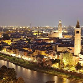 Verona Vista by Seán Feely - City,  Street & Park  Vistas