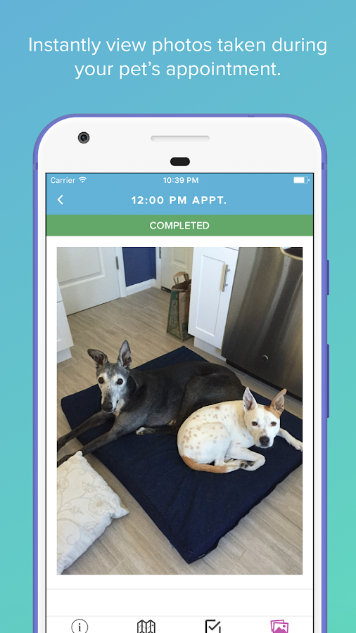 Scout for Pet Owners- screenshot