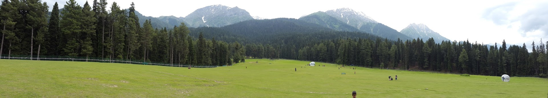 Panaroma shot, meadow in Pahalgam