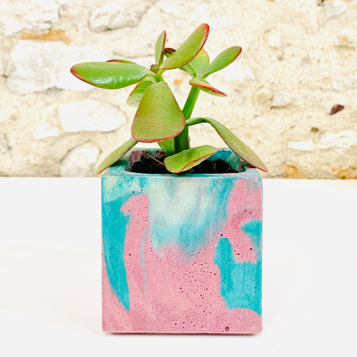 pot en béton marbré rose et turquoise avec succulente