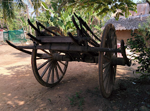 Photo: A traditional ox-cart, but evidentally still used (note the fresh tracks). Look at the cart closely; its construction is subtle and complicated. What is the function of the lashings that pass beneath the axle near its center?