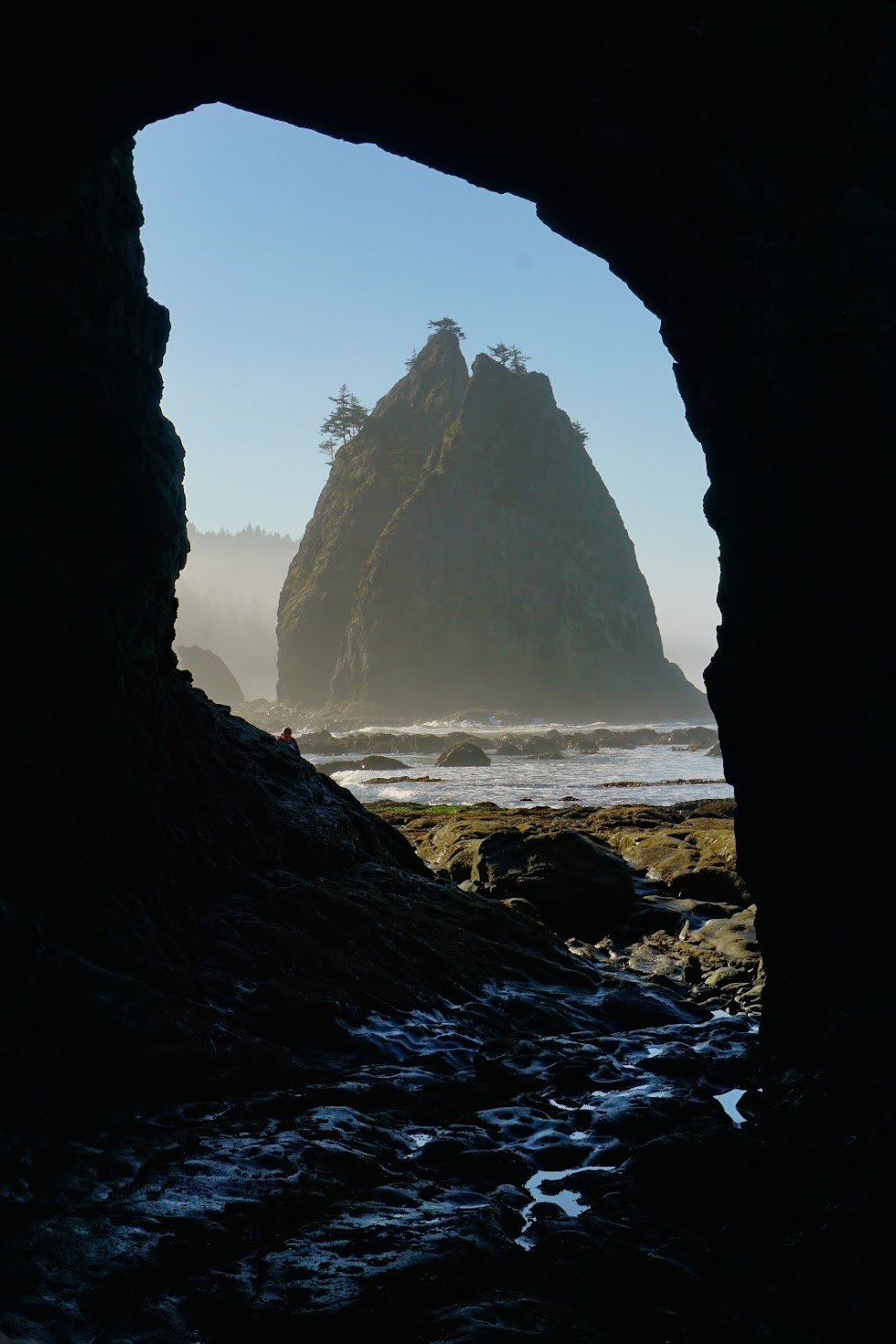 Rock Arches, sea stacks and tidal pools dot the coast near Rialto Beach - Olympic National Park, Washington