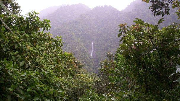 Parque nacional Tapanti