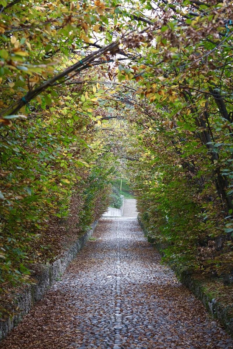 Tunnel d'autunno di michimotta