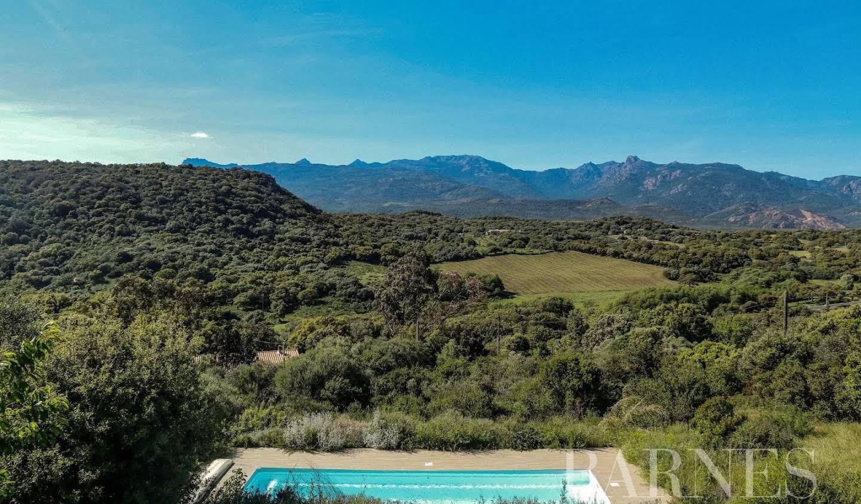 Villa avec terrasse Figari