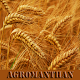Download AGROMANTHAN:Agro NEWS media and information guide for PC