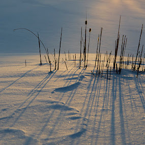 Hope by Jean Photo-Vigneault - Landscapes Weather