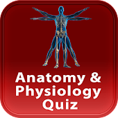 Anatomy & Physiology Quiz