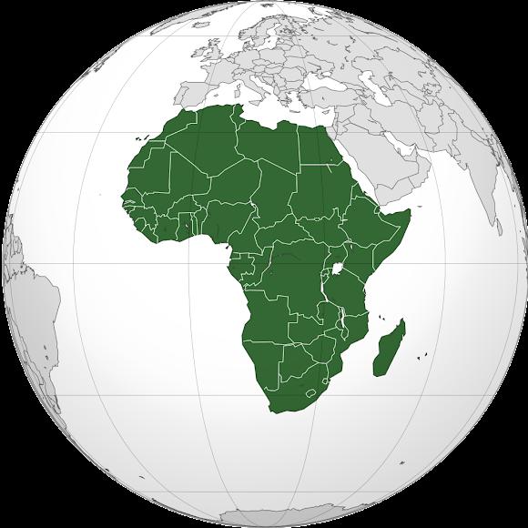 非洲豆 Africa beans