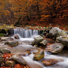 October stream by Mircea Costina - Landscapes Forests ( stream, spectacular, autumn, colors, waterfall, fall, forest, leaves, landscape, transylvania )
