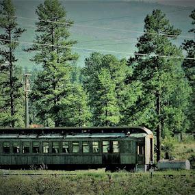 I think I can by Keysha Wallace-Patton - Transportation Trains