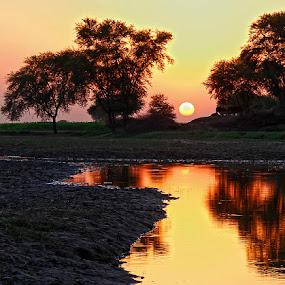 Sunset  by Abdul Rehman - Landscapes Sunsets & Sunrises ( water, pakistan, punjab, village, sunset, rural,  )