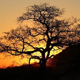namibia sunset by Dirk de Vos - Landscapes Sunsets & Sunrises