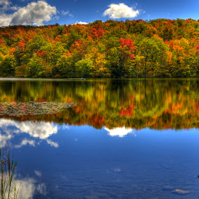 by Lyle Gallup - Landscapes Waterscapes ( , fall, color, colorful, nature, relax, tranquil, relaxing, tranquility, renewal, green, trees, forests, natural, scenic, meditation, the mood factory, mood, emotions, jade, revive, inspirational, earthly )