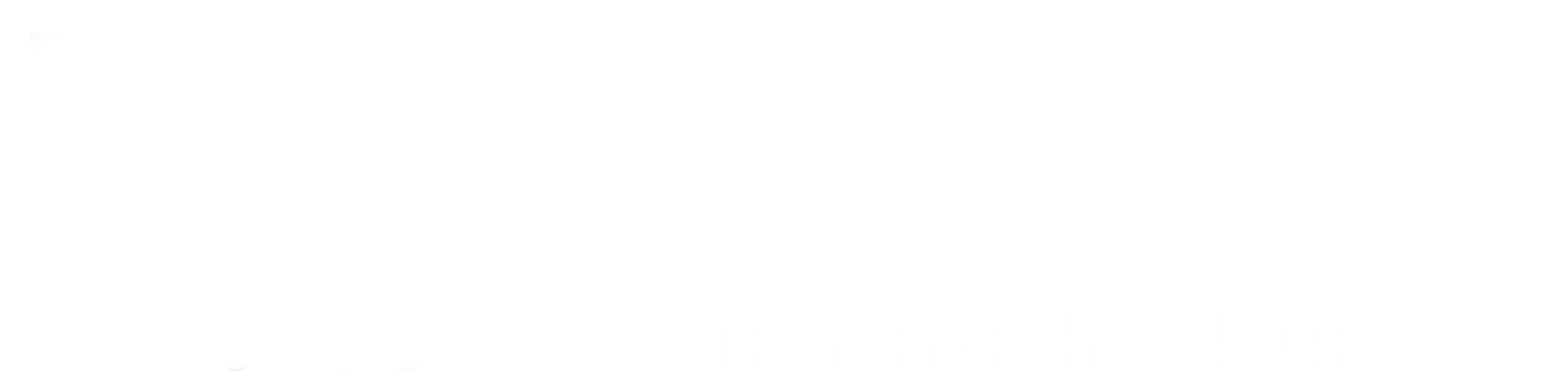 holzwoi logo