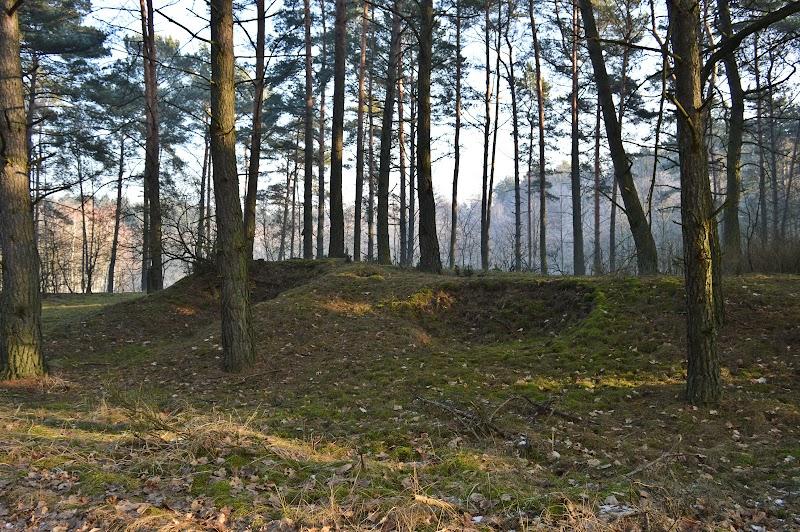 [Fot. 7] Tu był/jest cmentarz | Wygoda (gm. Wielka Nieszawka, pow. toruński), 2017