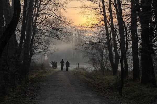 camminando all'alba di davide_negro