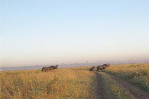 The Nairobi National Park is threatened by among others habitat loss, poaching and human-wildlife conflict.