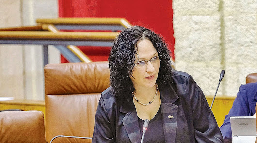 Vox Almería, la crisis interminable