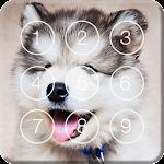 Cute Hasky Puppies Screen Lock