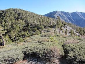 Photo: View south back toward the Pine/Dawson Saddle