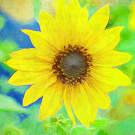 by Millieanne T - Digital Art Things ( ps, topaz, yellow, filters, flower )