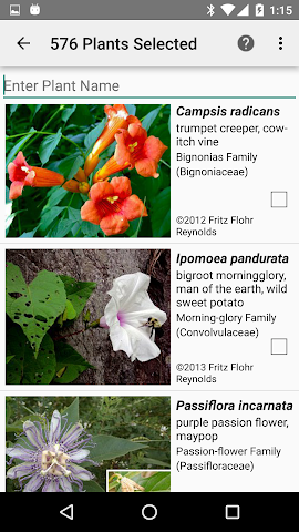 android Arkansas Wildflowers Screenshot 2